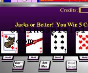 Casino critters video poker spiele online